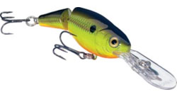 The Rapala Jointed Shad Rap Crankbait.