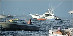 Tarpon boats, fighting fish, move out of the flotilla, as jiggers, in smaller boats, mix with larger charter boats jockeying for position in the red zone.